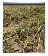 Vidalia Onion Seed Field - Georgia Fleece Blanket