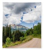 View From Kebler Pass Fleece Blanket