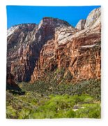 View From Weeping Rock Fleece Blanket