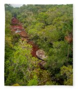 View Of Cano Cristales In Colombia Fleece Blanket