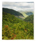 View To The Valley Fleece Blanket
