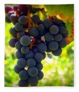 Vine Purple Grapes  Fleece Blanket