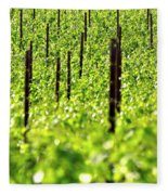 Vineyard 24056 Fleece Blanket