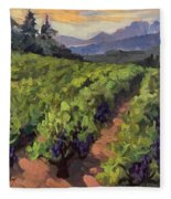 Vineyard At Dentelles Fleece Blanket