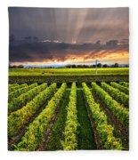 Vineyard At Sunset Fleece Blanket