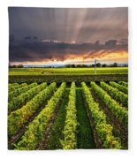 Vineyard At Sunset Fleece Blanket