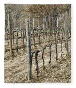 Vineyard In Early Spring Fleece Blanket