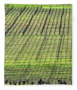 Vineyard Lines 23048 Fleece Blanket