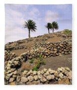Vineyard On Lanzarote Fleece Blanket