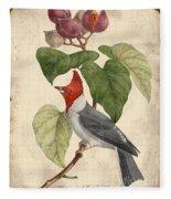 Vintage Bird Study-d Fleece Blanket