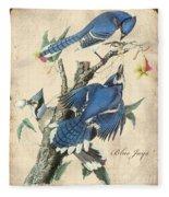 Vintage Bird Study-f Fleece Blanket