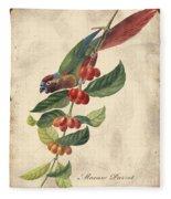 Vintage Bird Study-h Fleece Blanket