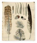 Vintage Feather Study-a Fleece Blanket