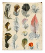 Vintage Feather Study-b Fleece Blanket