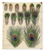Vintage Feather Study-jp2084 Fleece Blanket