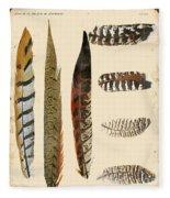 Vintage Feather Study-jp2085 Fleece Blanket