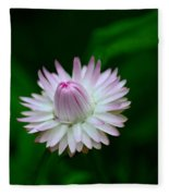 Violet And White Flower Sepals And Bud Fleece Blanket