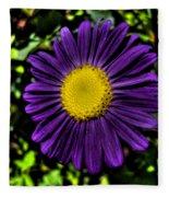 Violet Aster Fleece Blanket