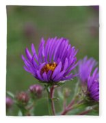 Violet Breeze Fleece Blanket