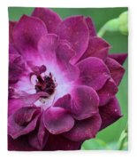 Violet Rose And Buds Fleece Blanket