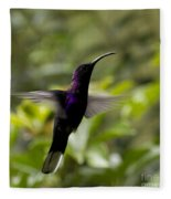 Violet Sabrewing At Cielito Sur Fleece Blanket