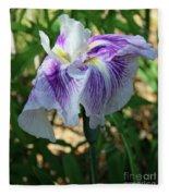 Violet Striped Iris Fleece Blanket
