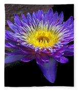 Violet Waterlily Fleece Blanket