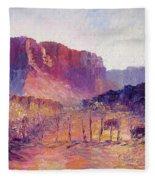 Virgin Valley View Fleece Blanket