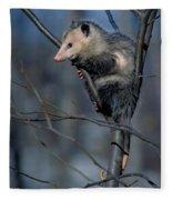 Virginia Opossum Fleece Blanket