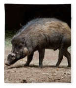 Visayan Warty Pig Fleece Blanket