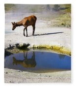 Visitor At West Thumb Basin Fleece Blanket
