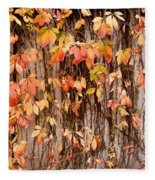 Vitaceae Family Ivy Wall Abstract Fleece Blanket