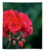 Vividly Red Geranium Fleece Blanket