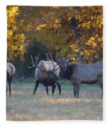 Vocalization Fleece Blanket