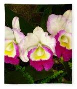 Cattleya Orchid Fleece Blanket