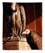 Vulture Male Fleece Blanket