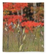 Wachusett Meadows 4 Fleece Blanket