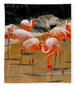 Waikiki Flamingos Fleece Blanket