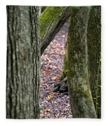 Walk Among The Trees Fleece Blanket