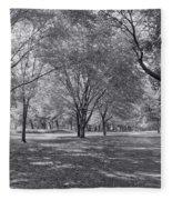 Walk In The Park Fleece Blanket