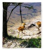 Walking Around The Lake Fleece Blanket