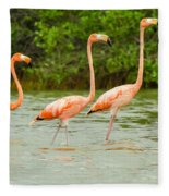 Walking Flamingos Fleece Blanket