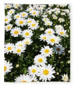 Wall To Wall Daisies Fleece Blanket