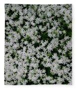 Wallflowers 2  Fleece Blanket