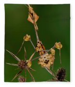 Wandering Violin Mantis Fleece Blanket