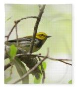 Warbler - Black-throated Green  Fleece Blanket