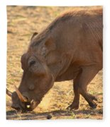 Warthog Fleece Blanket