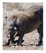 Warthog Digging Fleece Blanket