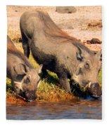 Warthog Family Fleece Blanket