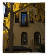 Washington D C Facades - Dupont Circle Neighborhood In Yellow Fleece Blanket